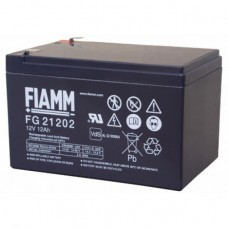 Fiamm FG21202 lead acid battery 12 Volt
